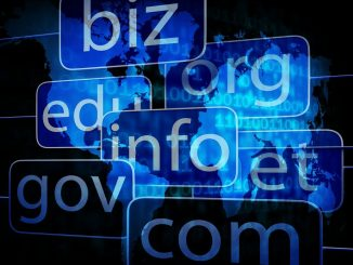 Domain Name Acronyms Guide